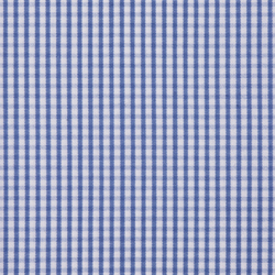 Blue White Check