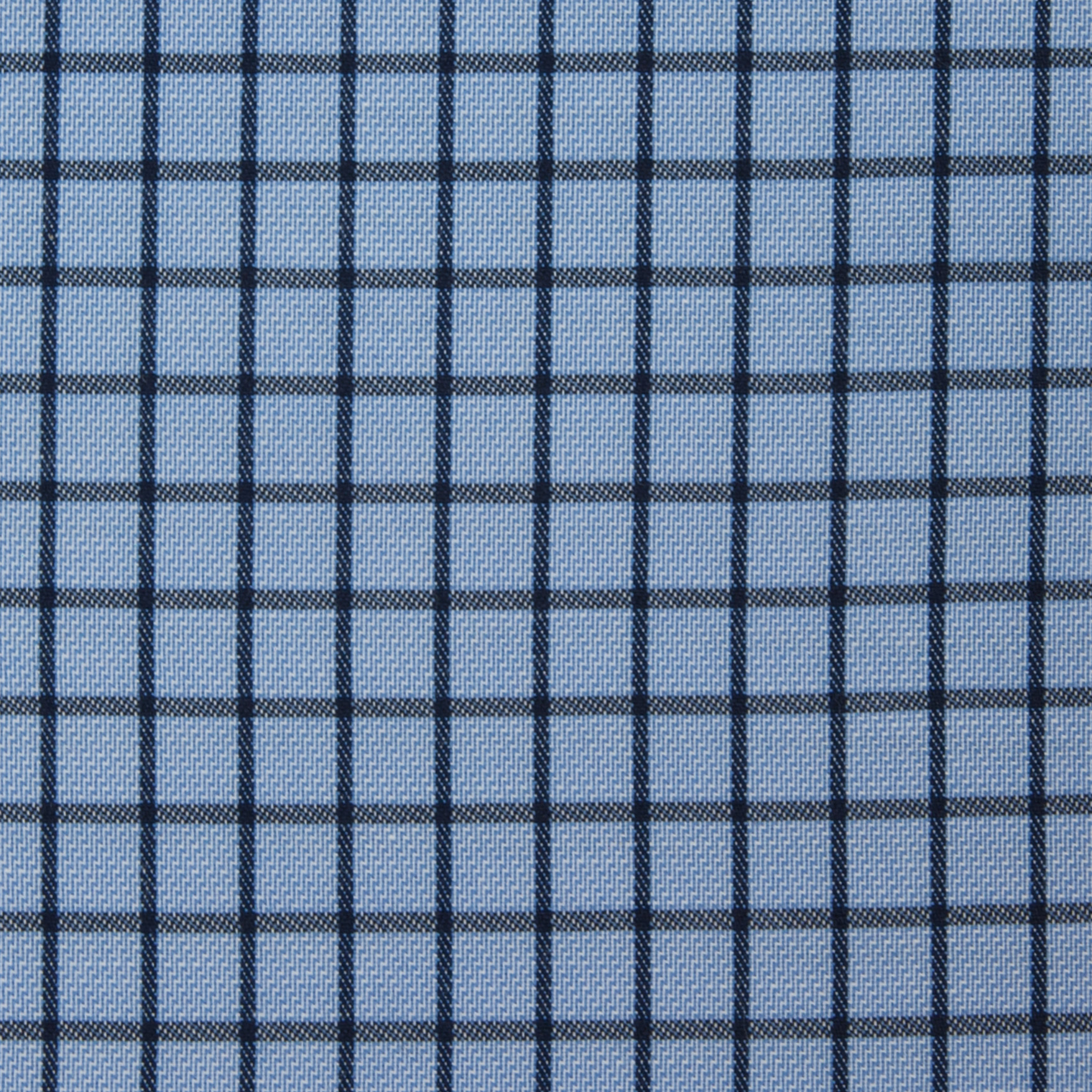 Navy Check on Blue