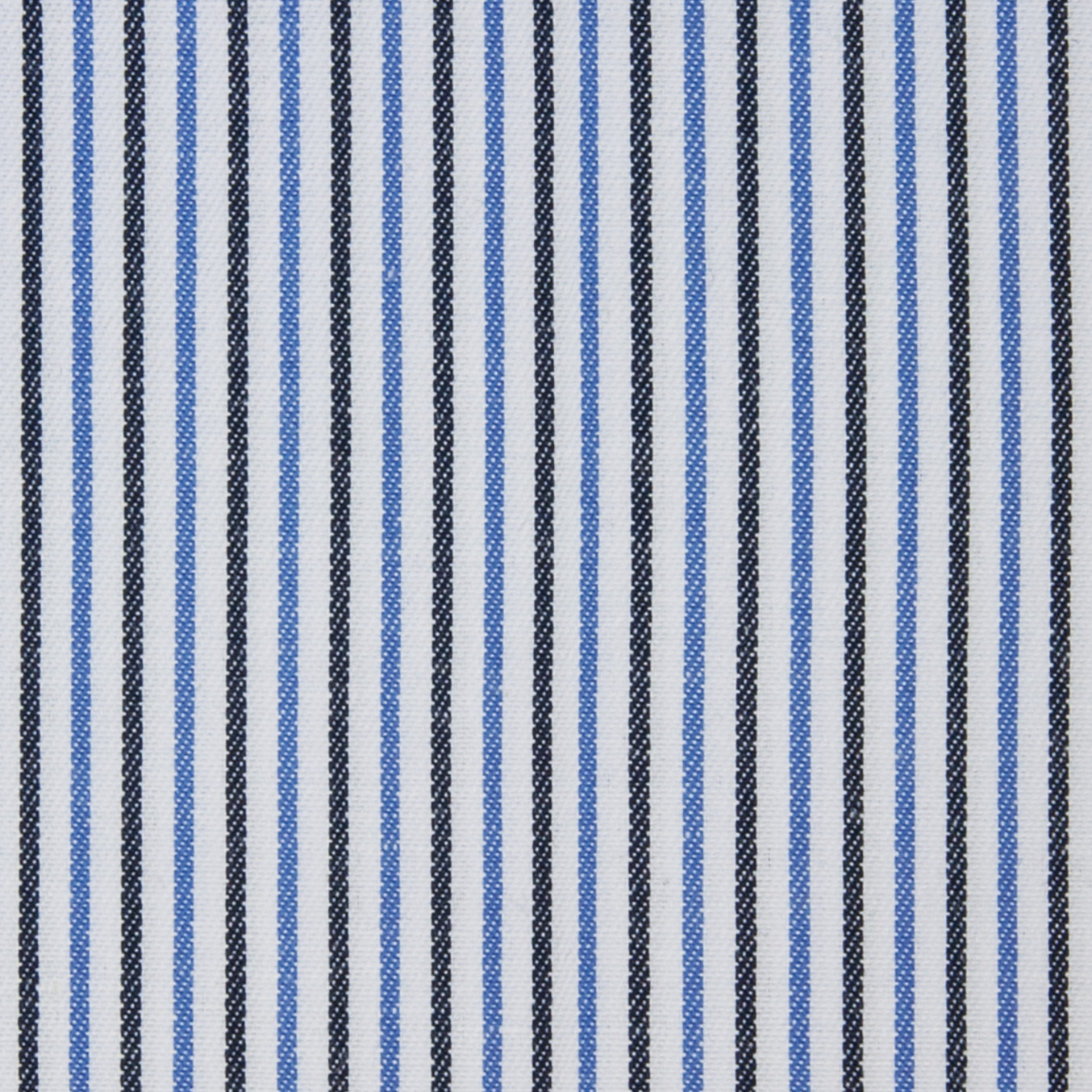 Black and Blue Stripe on White
