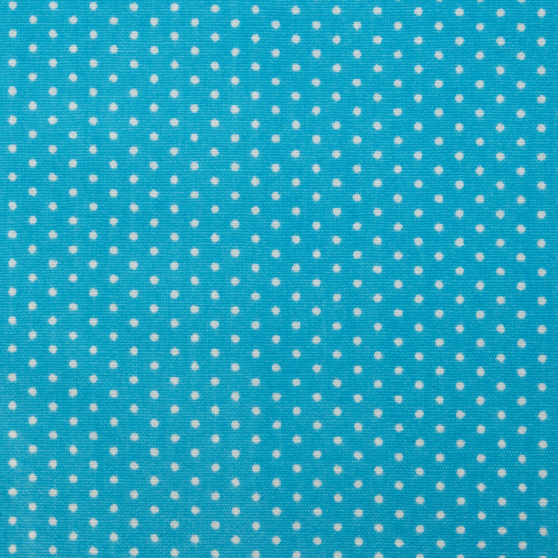 Sky Blue with Polka Dots